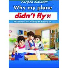 why my plane didn't fly?